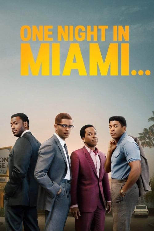 Una noche en Miami… poster