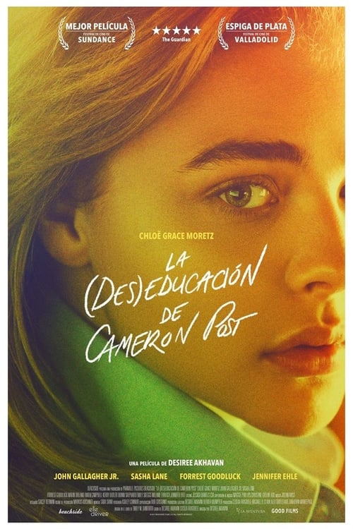 La (des)educación de Cameron Post poster