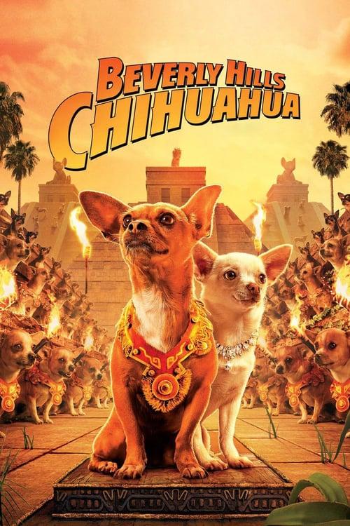 Póster película Un chihuahua en Beverly Hills
