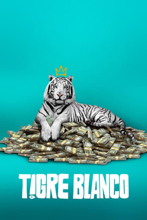 Póster película Tigre Blanco