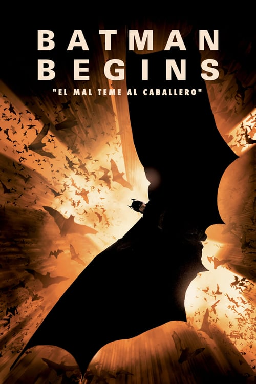 Póster película Batman Begins