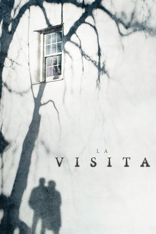 Póster película La visita