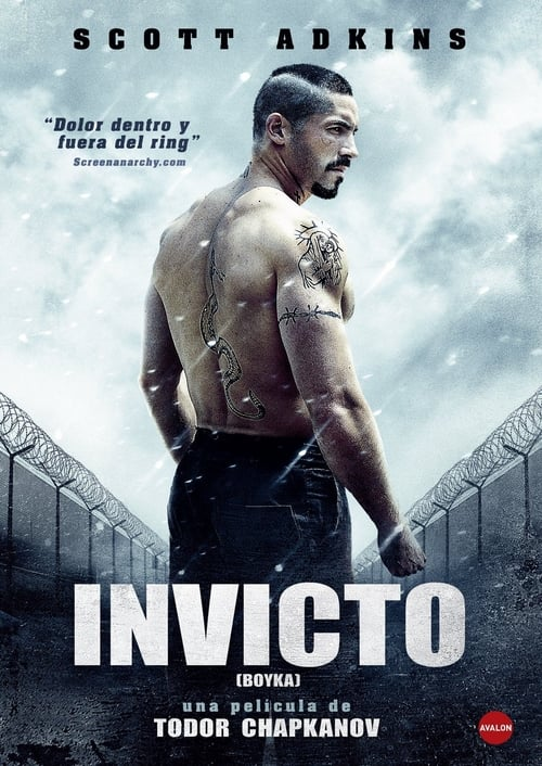 Póster película Boyka: Invicto IV