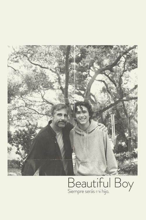 Póster película Beautiful boy, siempre serás mi hijo
