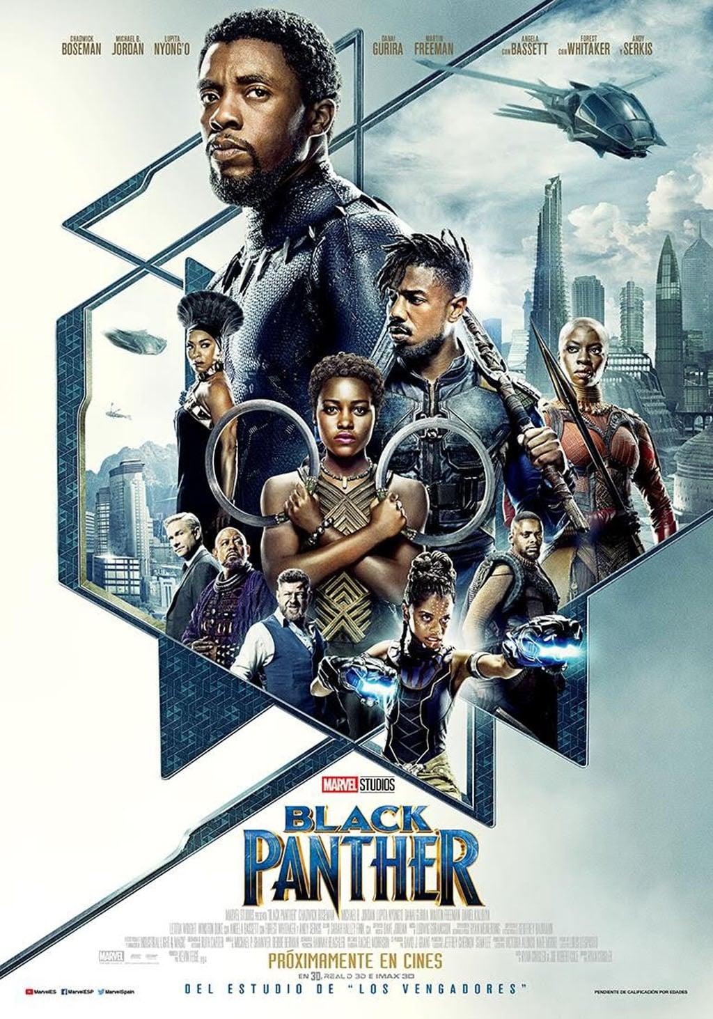 Póster película Black Panther