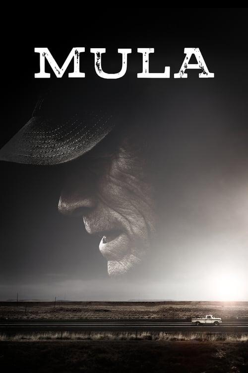 Póster película Mula
