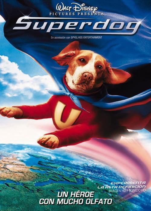 Superdog poster