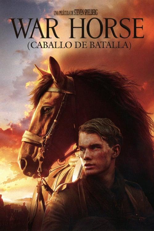 War Horse (Caballo de batalla) poster