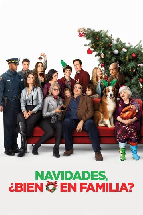 Navidades, ¿bien o en familia? poster