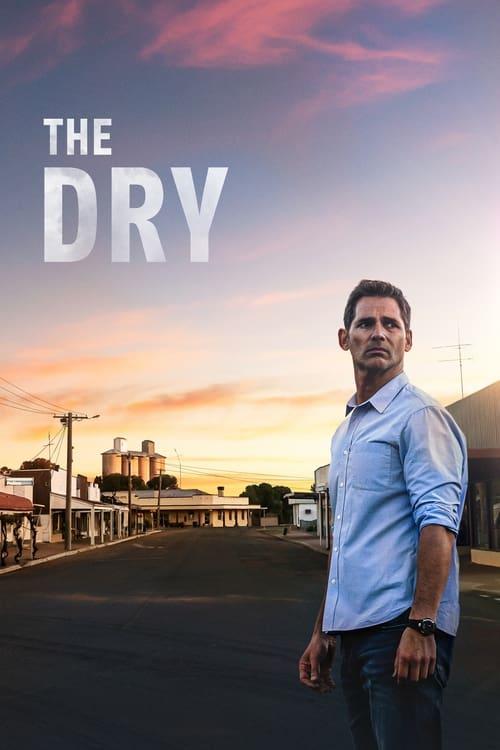Póster película The Dry