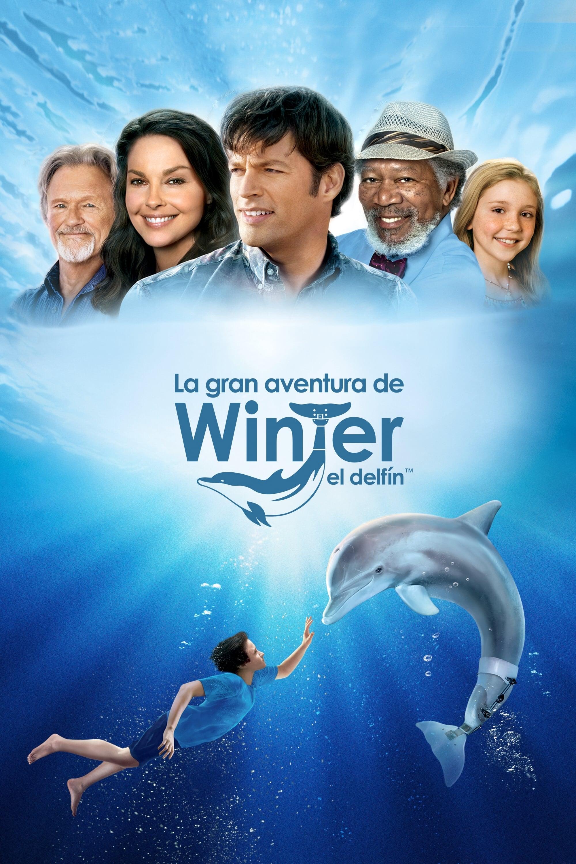 Póster película La gran aventura de Winter el delfín