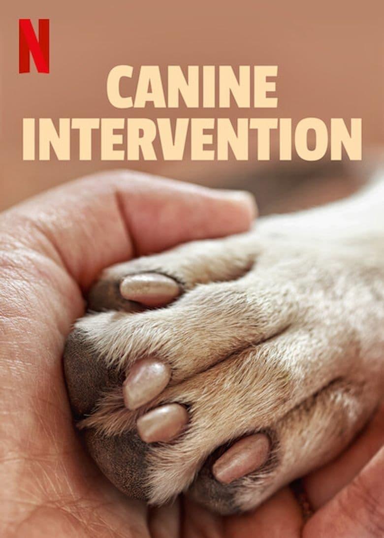 Póster película Terapia Canina