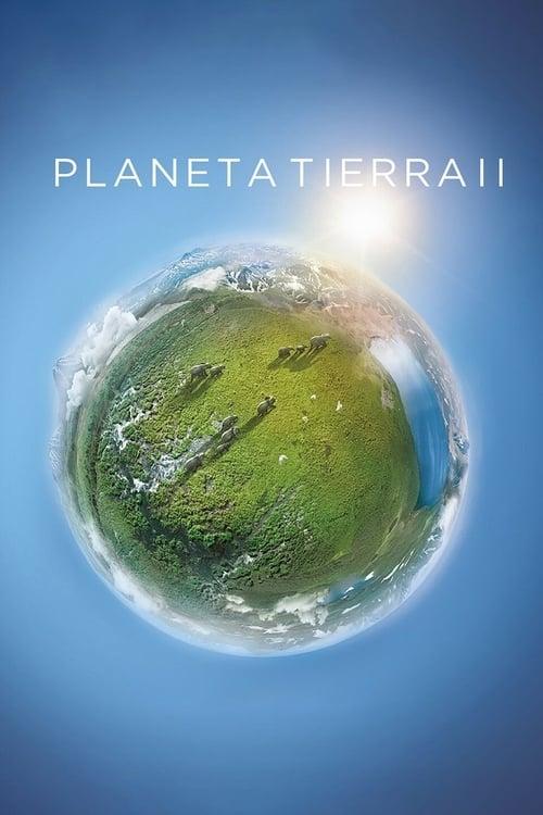 Planeta Tierra II poster