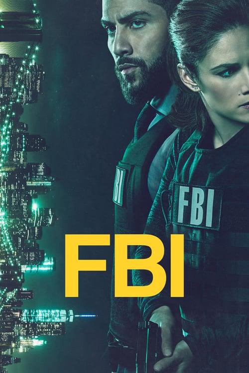 Póster serie FBI