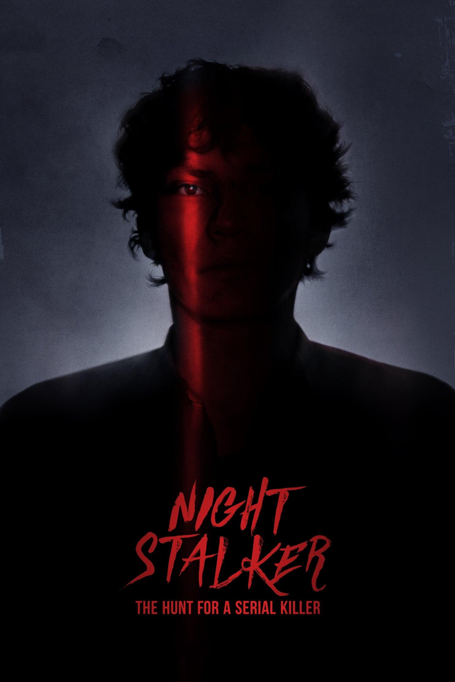 Acosador nocturno: A la caza de un asesino en serie poster