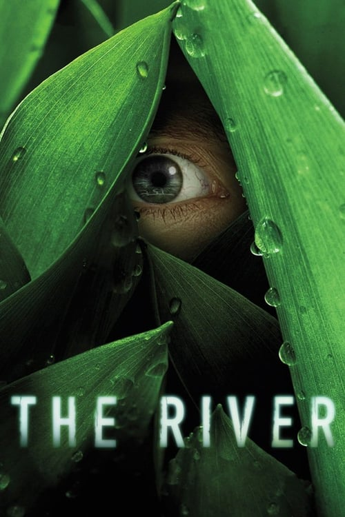 Póster The River