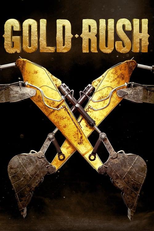 La fiebre del oro poster