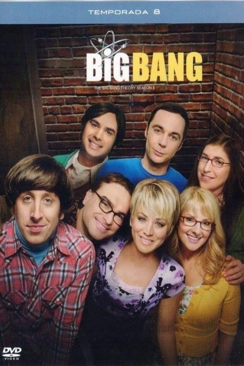 Temporada 8 : Big Bang