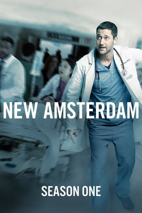 Temporada 1 : New Amsterdam