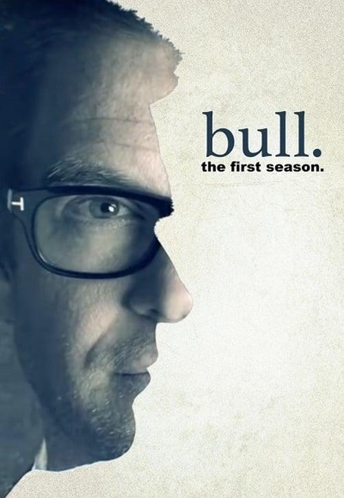 Temporada 1 : Bull