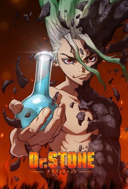 Temporada 1 : Dr. Stone