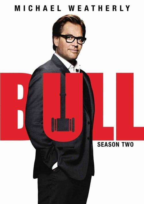 Temporada 2 : Bull
