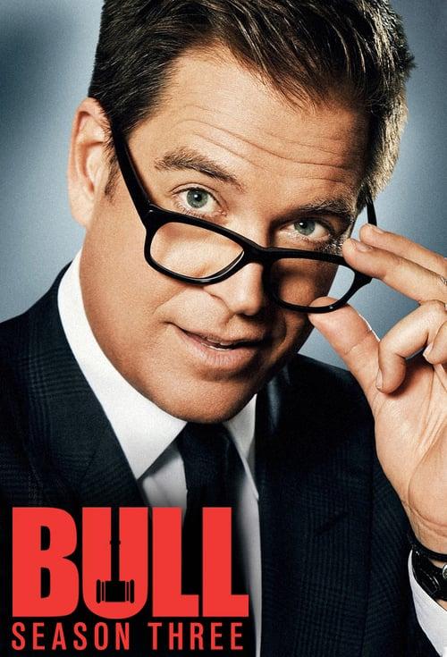 Temporada 3 : Bull