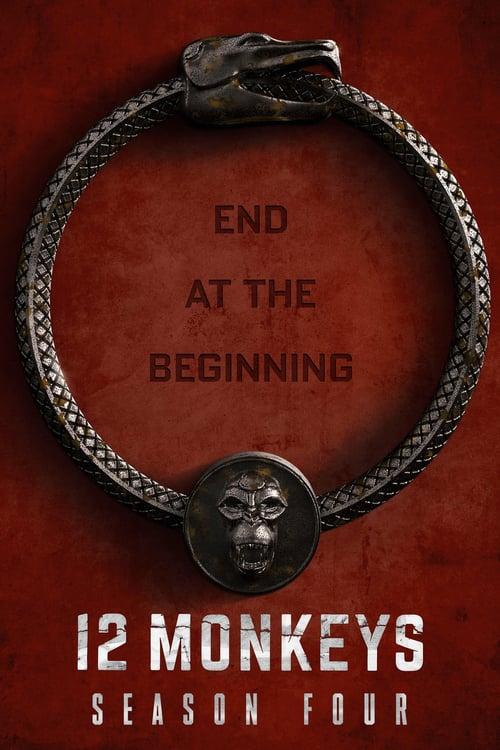Temporada 4 : 12 monos