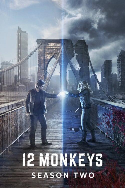 Temporada 2 : 12 monos