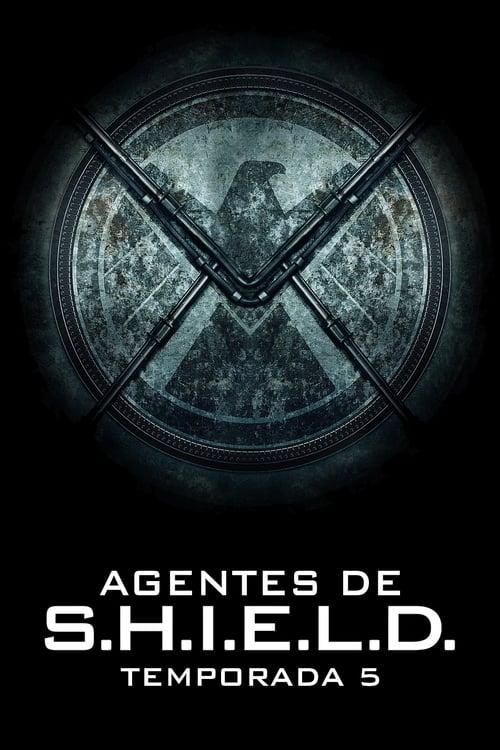 Temporada 5 : Marvel Agentes de S.H.I.E.L.D.