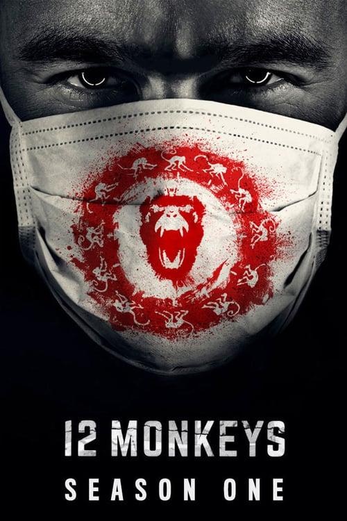 Temporada 1 : 12 monos