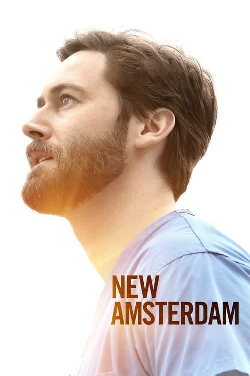 Temporada 3 : New Amsterdam