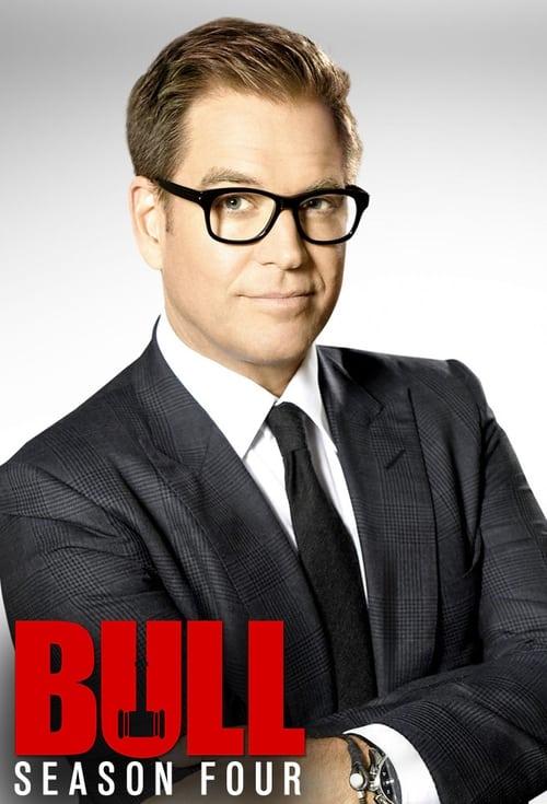 Temporada 4 : Bull